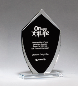 Shield Shaped Glass Award with Black Silk Screened Center