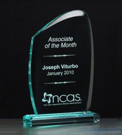 Wave Acrylic Award